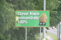 IMG_4528 (chicabrandita) Tags: new sign driving kiwis zealand safe kiwi clever 2010 concentrate cleverkiwis