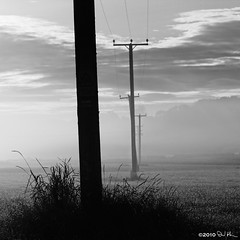 Telegraphing the Dawn (David Hannah) Tags: morning white mist black grass fog dawn scotland power stirling farmland line electricity powerline poles telegraph kippen 40d welcomeuk