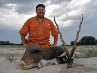 "2010 23"" Blackbuck"