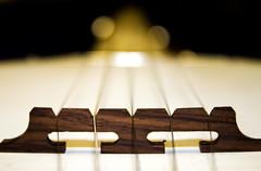 Banjo (dmunroephoto) Tags: usa macro closeup canon florida band banjo strings marchingband fret bartow canoneosrebelt1i canonef100mmf28lmacroisusm bartowseniorhighschool bartowhighschoolband