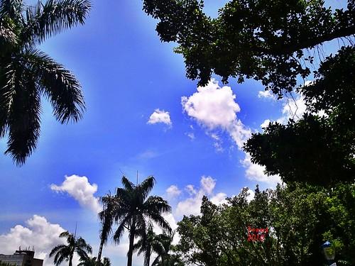 2010-08-09 好天氣