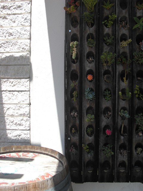 vertical gardens...love