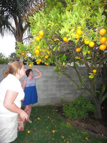Minds were blown.  Oranges were picked.