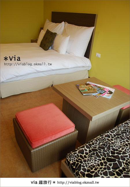 【新竹住宿】來去和動物住一晚~關西六福莊生態渡假旅館31