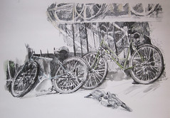 (Hava Matzkin Eilam Art) Tags: urban art bike ink drawing dove  portfolio  hava  eilam  matzkin