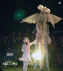 Compagnie Malabar: Le Voyage des Aquarves (The Crow2) Tags: budapest performance panasonic sziget 2010 streettheatre dmcfz30 compagniemalabar elads utcasznhz thecrow2 lastfm:event=1250223