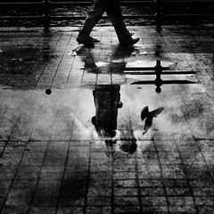 mad world (*iskandar) Tags: life city blackandwhite bird love monochrome rain birds reflections grit puddle concrete mono singa