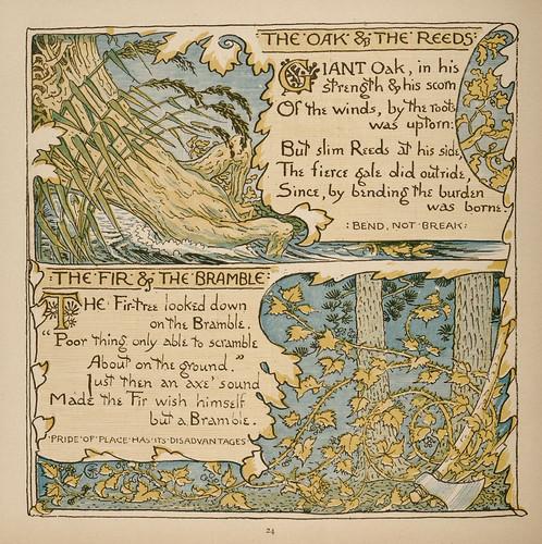 Quercus et Harundo; Abies et Rubus