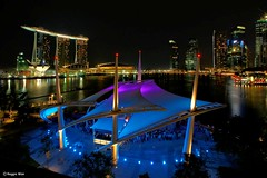 Theatres By The Bay-Night Shot. (Reggie Wan) Tags: building night ir singapore asia southeastasia cityscape esplanade mbs marinabay integratedresort theatresbythebay marinabaysands citynightlight sonya700 sonyalpha700 reggiewan