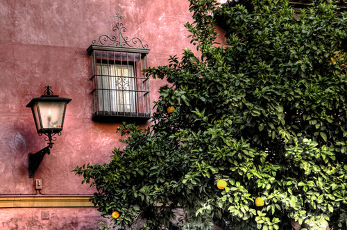 Streetlamp and orange tree. Seville. Farola y naranjo. Sevilla.