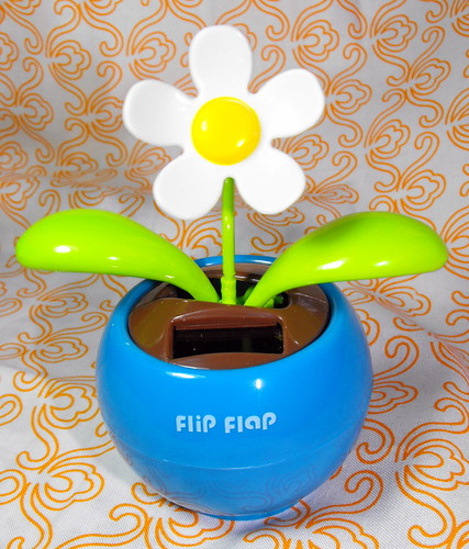 Funny flip flap flower