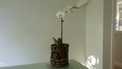 The Tiki Planter