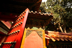 Imperial Gardens 46 (David OMalley) Tags: china city red beauty architecture capital chinese beijing palace forbidden empire imperial  forbiddencity dynasty emperor  grandeur  verbotenestadt citinterdite    verbodenstad cidadeproibida cittproibita yasakehir chineseempire    ipinagbabawalnalungsod cmthnhph