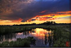 Sailing to Byzantium (Kansas Poetry (Patrick)) Tags: sunset lawrencekansas bakerwetlands wakarusawetlands patricknancyweddedbliss