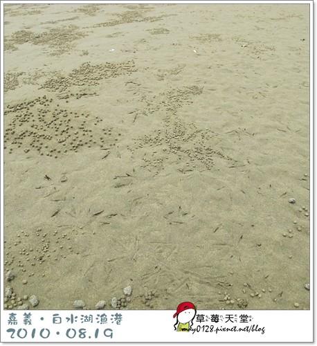 白水湖漁港83-2010.08.19