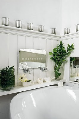 bath room with plants