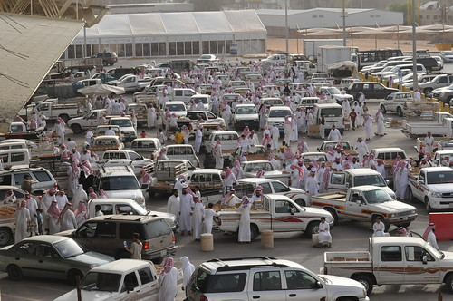 Buraydah Saudi Arabia  city pictures gallery : Saudi Arabia / Al Qaseem / Buraydah / Alsabakh