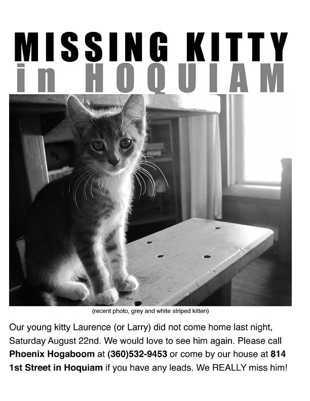 Lost Larry