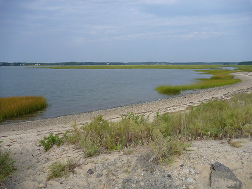 Mouth of the Back River