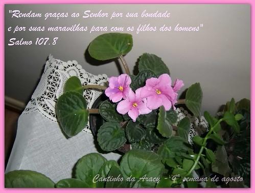 Salmo 107 - 8 - 4ª semana de agosto by Cantinho da Aracy