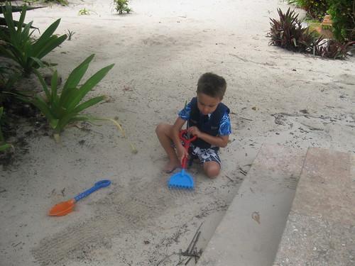 Ezra's favorite digging spot
