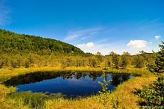 Tinovul Mohos (Ovidiu H.) Tags: blue summer sky plants lake landscape europe romania florist carpathians reservation tokina1224f4 volcaniclake harghita tusnad nikond300 tinovulmohos