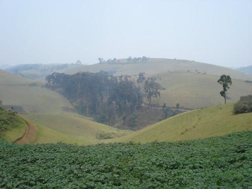 Province de Goma