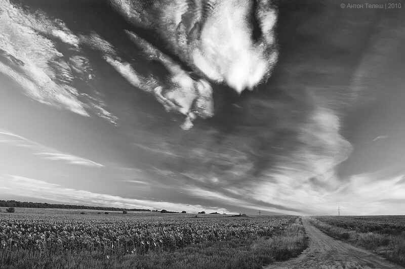 природа лето вечер небо пейзаж ЧБ фотограф Антон Телеш