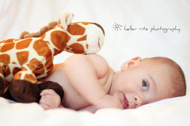 Teagan Giraffe_VP_Tagged