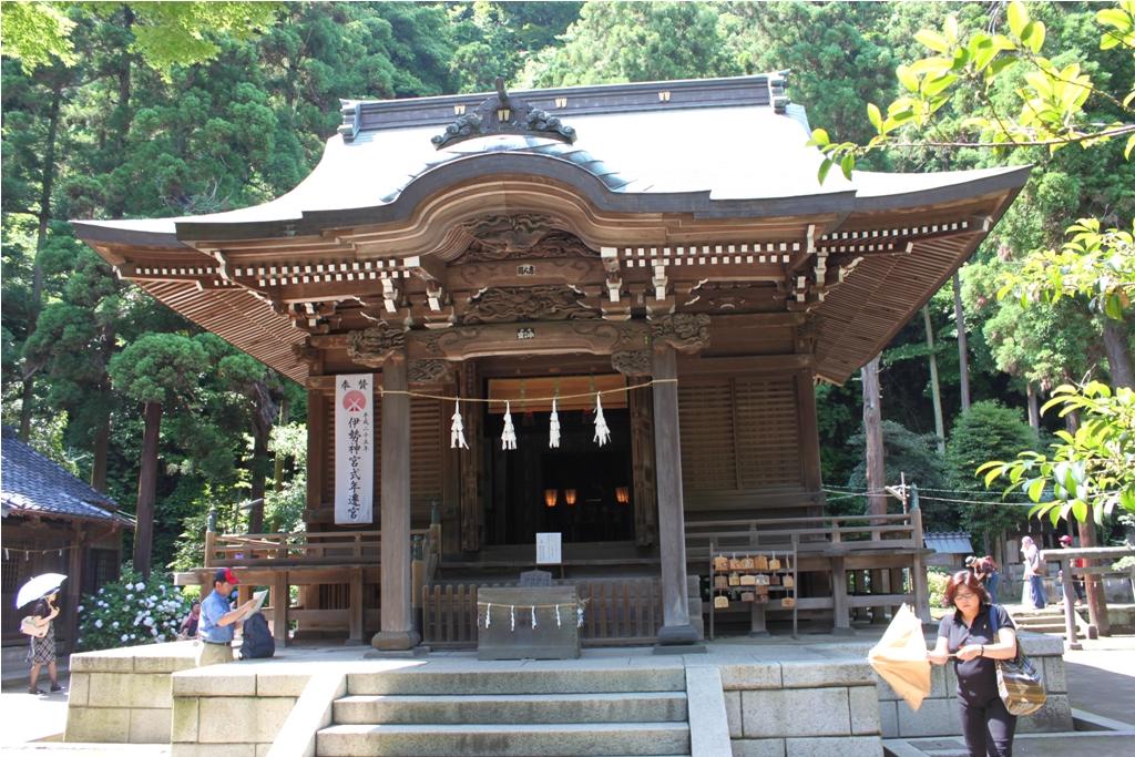 Hydrangeas - Exploring Hase, Kamakura (1)