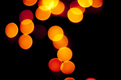 bokeh (Gerardography) Tags: red orange canon 50mm bokeh extreme 18 t1i