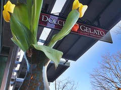 Dolce Gelato in Vancouver WA