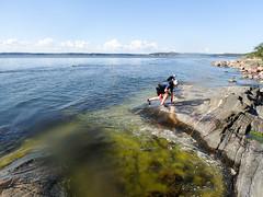 P6290443 (Tero Koski) Tags: porkkala swim swimrun