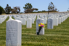 Some Gave All (KC Mike D.) Tags: tombstone graveyard headstone flowers vase remembrance death people heroes veterans forces armed pointloma sandiego cemetary ocean pacific coast