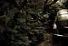 shaded (ion-bogdan dumitrescu) Tags: trees home car volkswagen alley beetle shade romania bucharest bitzi ibdp mg3080edit ibdpro wwwibdpro ionbogdandumitrescuphotography