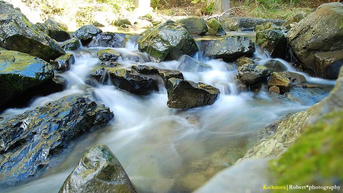 Ohau Stream Walk 03