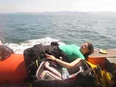 relaxing journey (squeezemonkey) Tags: holborndiver anglesey diver sea boat relaxing divekit coastline snowdonia mountains