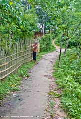 Indigenous Life [II] (S u h r i d) Tags: nikon bangladesh indigenous rangamati d40 kaptai indigenouslife porjoton