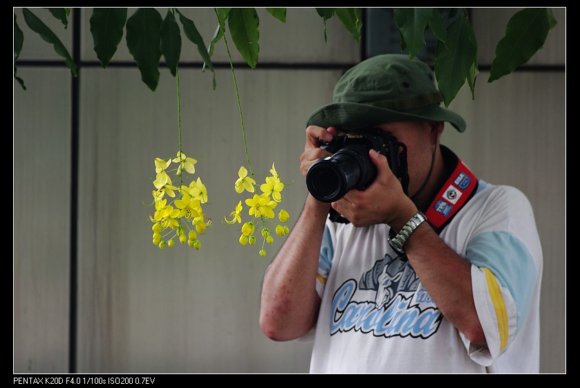 2010//06/26 DA* 300mm f4 阿勃勒!