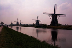 Windmills of Holland (Kinderdijk) (pas le matin) Tags: pink holland reflection netherlands windmill colors silhouette rose purple couleurs perspective silhouettes windmills mauve paysbas kinderdijk hollande moulinsvent moulinvent netherlandswindmills