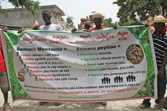 The main banner against Monsanto at the rally in Hinch (teqmin) Tags: usaid haiti corn farmers seeds demonstration mpp monsanto centralplateau hinch haitianpeasants gmofreeworld usforeignaid tminskyixnetcomcom antimonstanto foodsoverignty