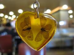 Lovely ambar (Bruna Piloto) Tags: macro yellow lights heart baltic amarelo lovely handcraft ambar âmbar beatifulcapture