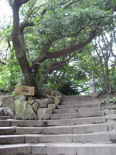 仙酔島 鞆の浦 江戸風呂 4