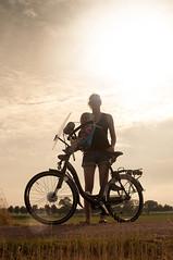 Ute's new bike (Boudewijn Berends) Tags: road bridge sun netherlands grass bike sheep mila ute sparta asphalt kampen weiland schapen moederfiets