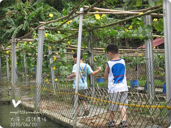 大溪摸硯農場21-2010.06.20