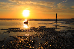 One Ironman and his dog, (+1 in comment) (Ianmoran1970) Tags: sunset orange dog man beach water sand ripple ironman gormley crosby anthonygormley anotherplace blundelsands