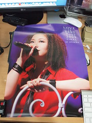 大塚愛 LOVE is BEST Tour 2009 Final Poster