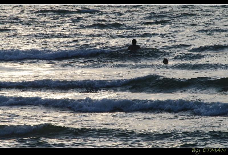 淡水沙崙豪宅 樂手白馬盆栽 夕陽西下 逐浪人在天崖