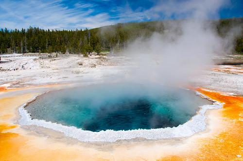 Yellowstone 19