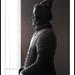 Chin Warrior S0147e